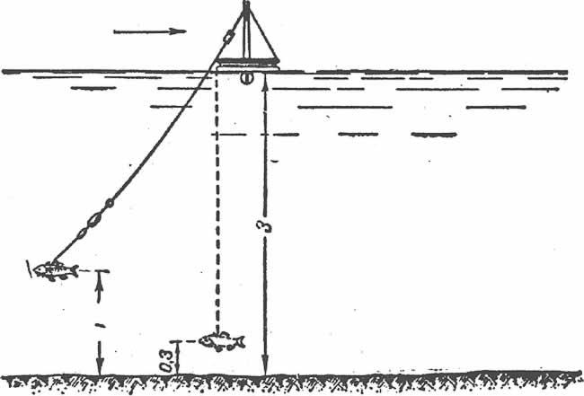 устройство кружка для ловли щуки схема